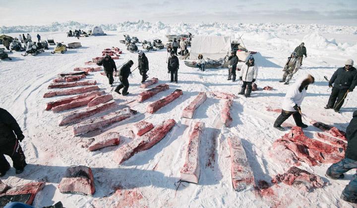伴随冰川融化而消失的土著文化