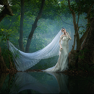 你是我梦中的新娘