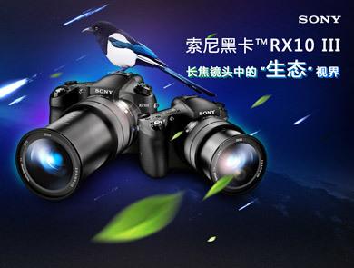 打鸟利器锋芒毕露 索尼黑卡RX10 III试用