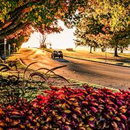 晚秋史丹利公园美景