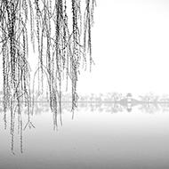 雾中水墨西堤