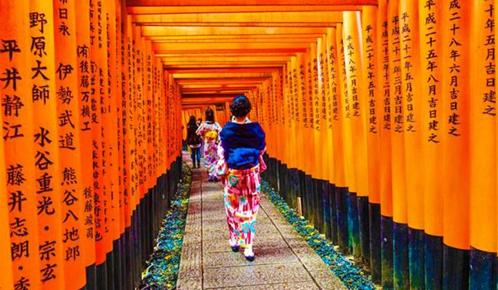 枫叶疯了地毯红了 日本之旅寻觅内心宁静(下)