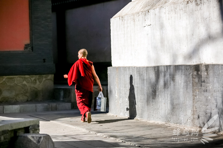 初入宗教场所,探访西宁塔尔寺  说道西宁,就得给大家介绍一下啦。西宁是青海省第一大城市,亦是整个青藏高原最大的城市也是青藏高原人口唯一超过百万的中心城市,移民人口达100万之多。  塔尔寺/聂子竣  塔尔寺/聂子竣  而我们此行的第一站便是位于西宁市区著名的塔尔寺。塔尔寺是中国西北地区藏传佛教的活动中心,在中国及东南亚享有盛名,也是中国藏传佛教格鲁派(黄教)六大寺院之一。  寺庙的建筑/聂子竣  旧时候的木头/聂子竣 &#