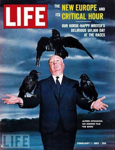 揭秘《Life》历史上最伟大的11张封面