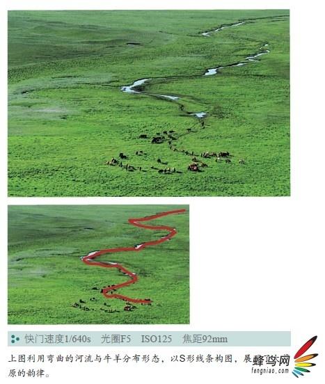 新手摄影进阶须知 曲线构图具有哪些特点