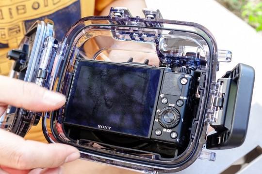 带着索尼黑卡™RX100V和潜水壳  体验水下摄影的魅力(下)