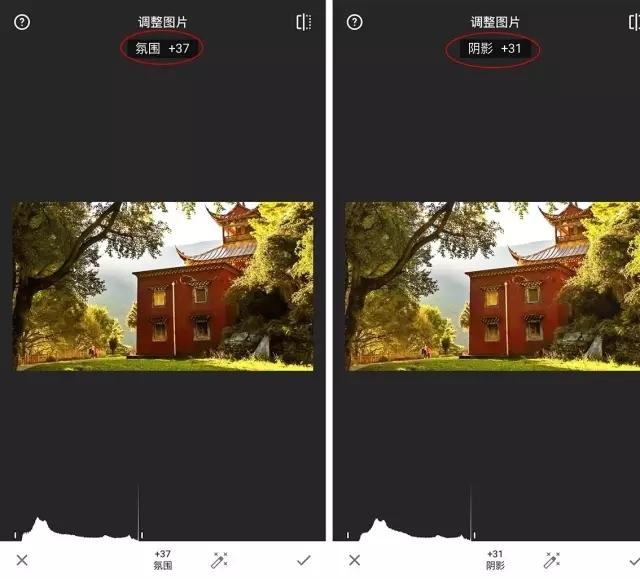 如何拍出透亮的逆光照片 从前期到后期详细技巧