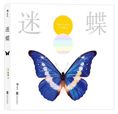 《迷蝶》微距镜头还原蝴蝶极致之美
