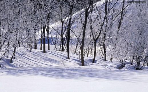 拍摄冬天的奇景