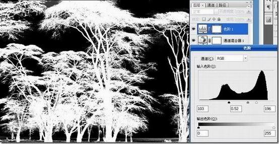利用反相和通道混合器调整图层进行抠图的方法 - 光影随行 - PHOTO BLOG * 光影随我行【】