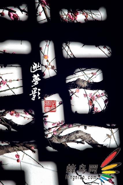 中国摄影新势力——江苏站专题