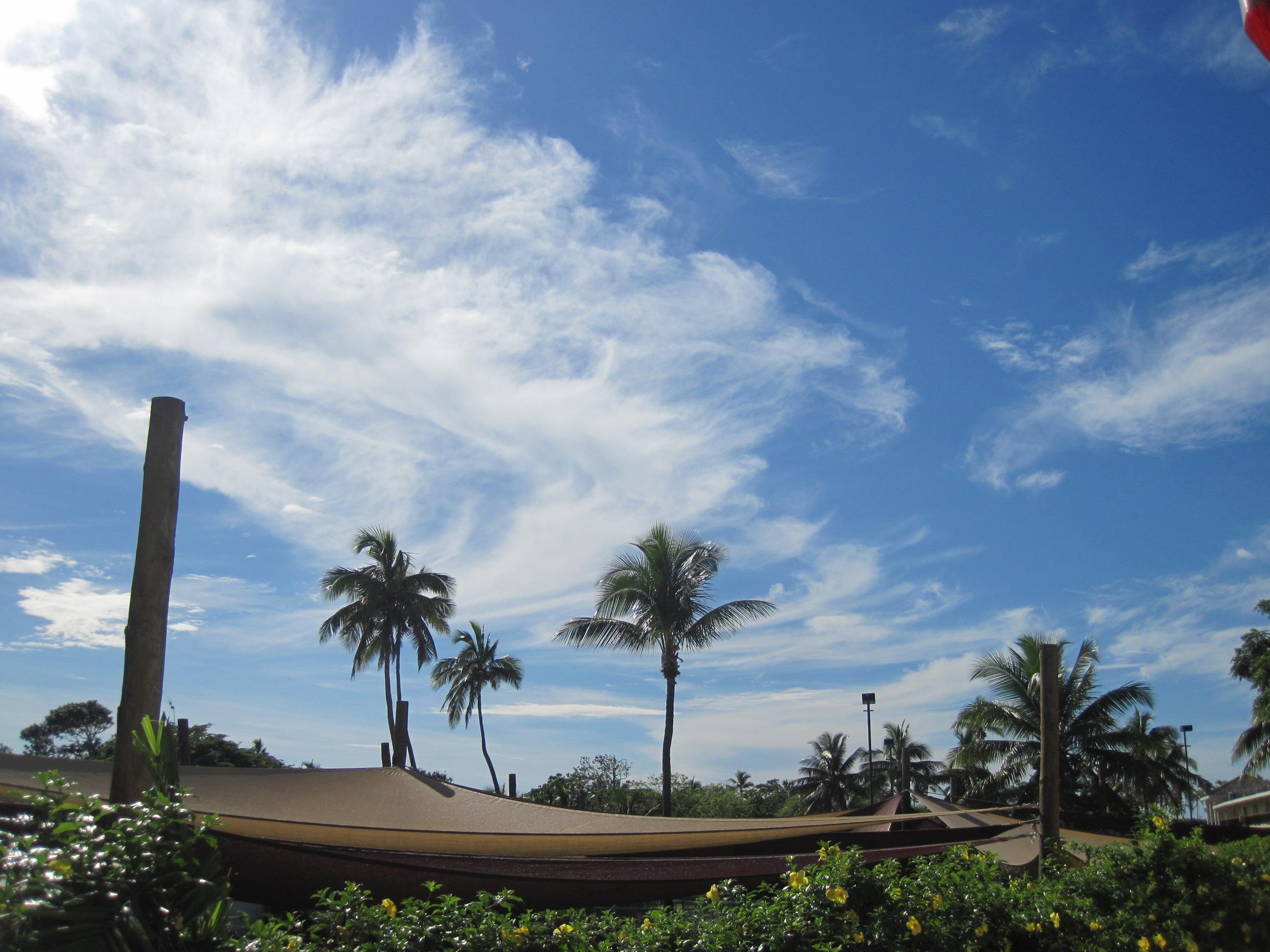 南太平洋岛国_南太平洋岛国地图