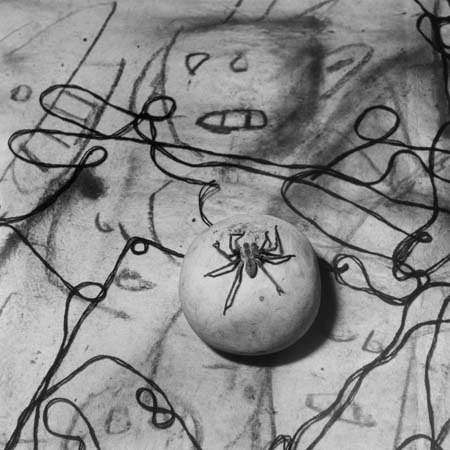 静静的魔力系列——罗杰·拜伦的静物摄影