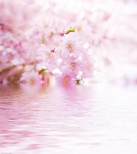 唯美桃花意境手绘图片