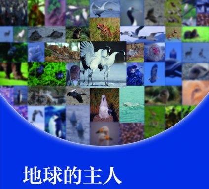 王琛野生动物摄影作品巡回展将亮相大理
